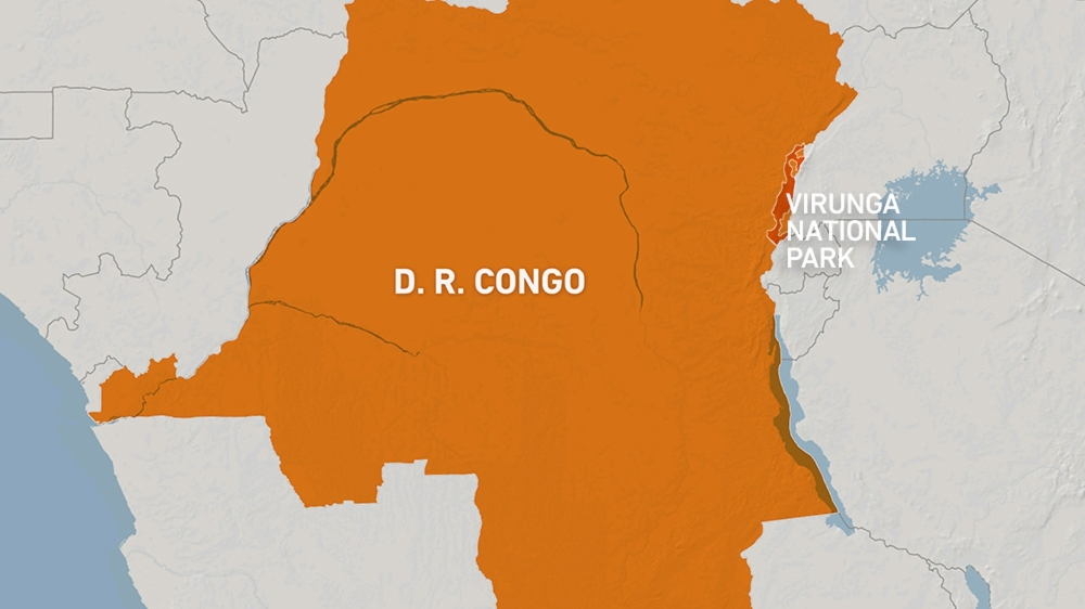 Ambush near Congo's Virunga park kills 12 rangers, five others