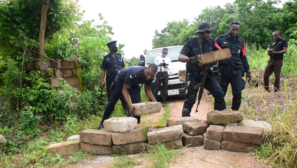 Police discovers illegal cannabis cultivation enclave in Boso