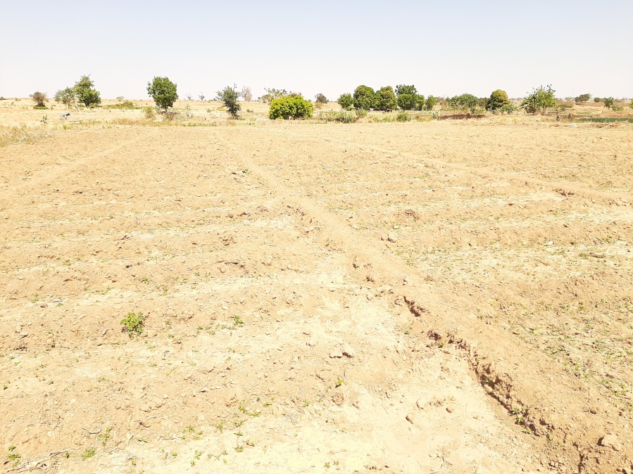 1V1D: Farmers appeal for boreholes as dam dries up