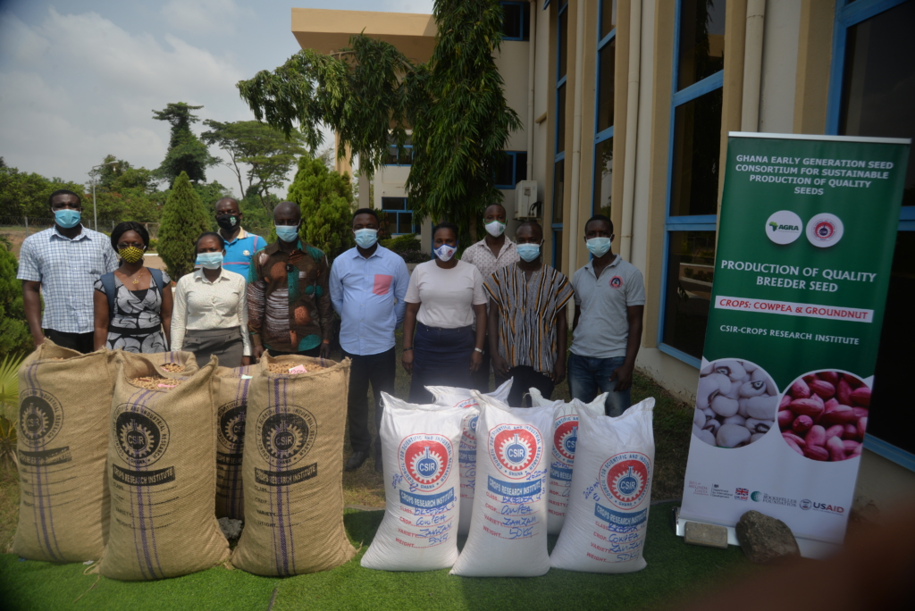 Planting for food and jobs receives boost as the Crops Research Institute produces tonnes of groundnut and cowpea seeds
