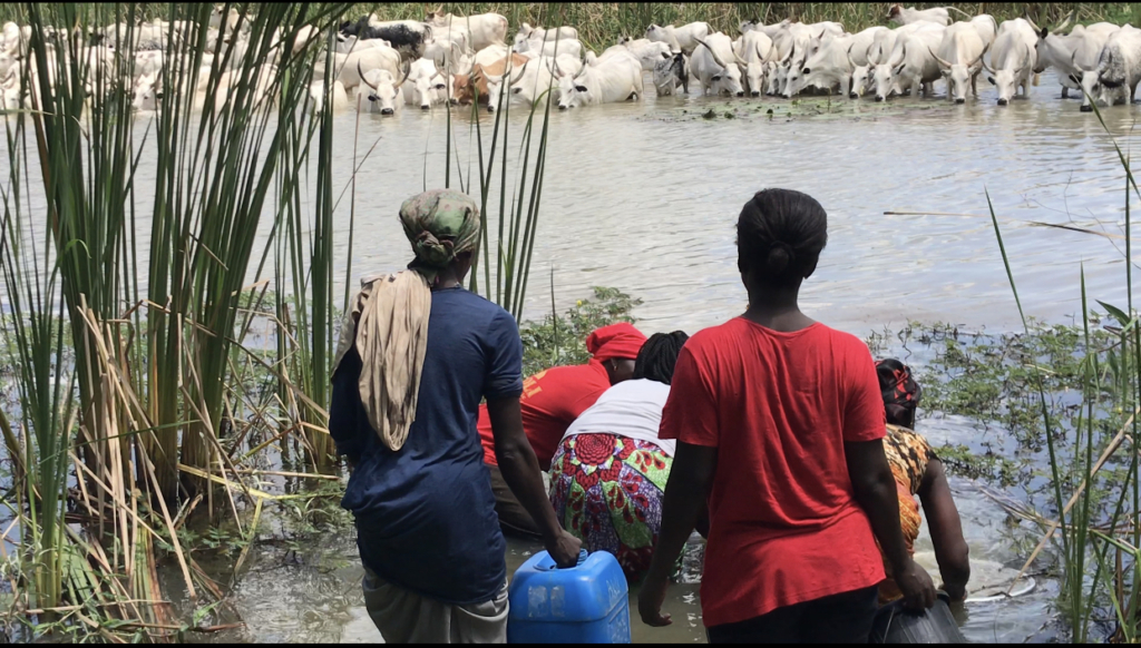 Srekpe and surrounding communities share water sources with animals