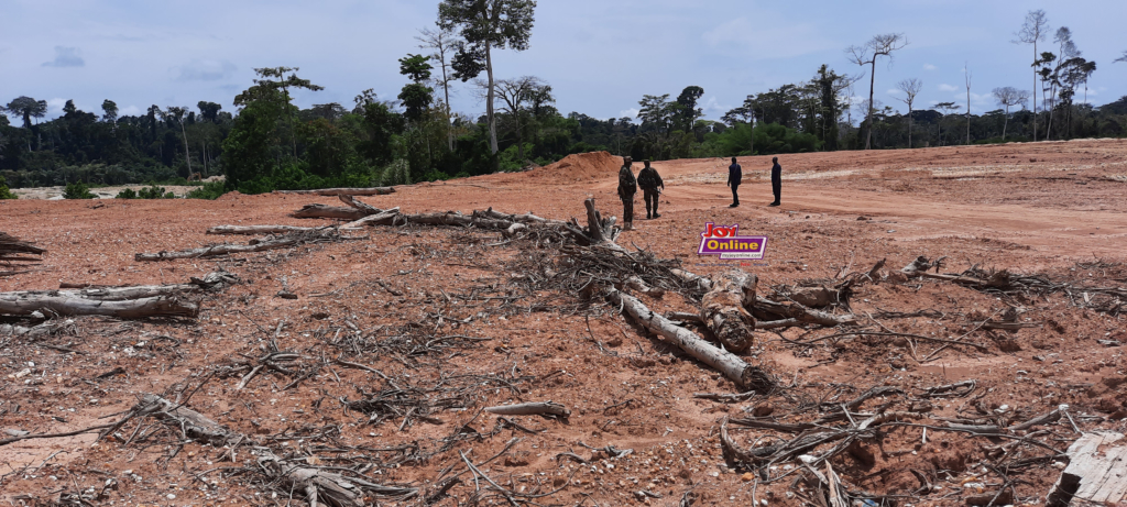 Several hectares of mined reserved reclaimed at Oda Forest Reserve www.myjoyonline.com