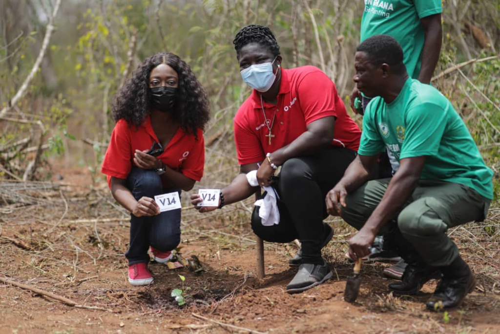 Vodafone Ghana plants 4,000 trees throughout June
