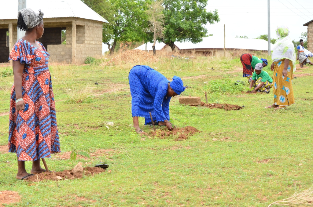 Green Ghana Day: GhaFFaP aims to plant 3 million trees to support government's cause