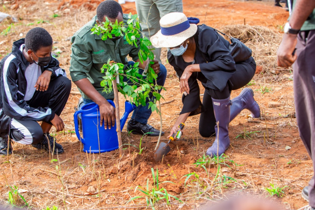 Rawlings' passion for the environment celebrated