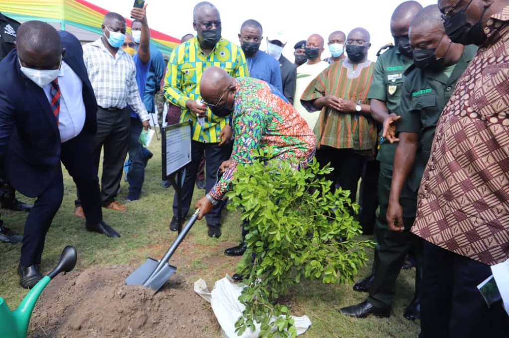Green Ghana Day now an annual event - Akufo-Addo reveals