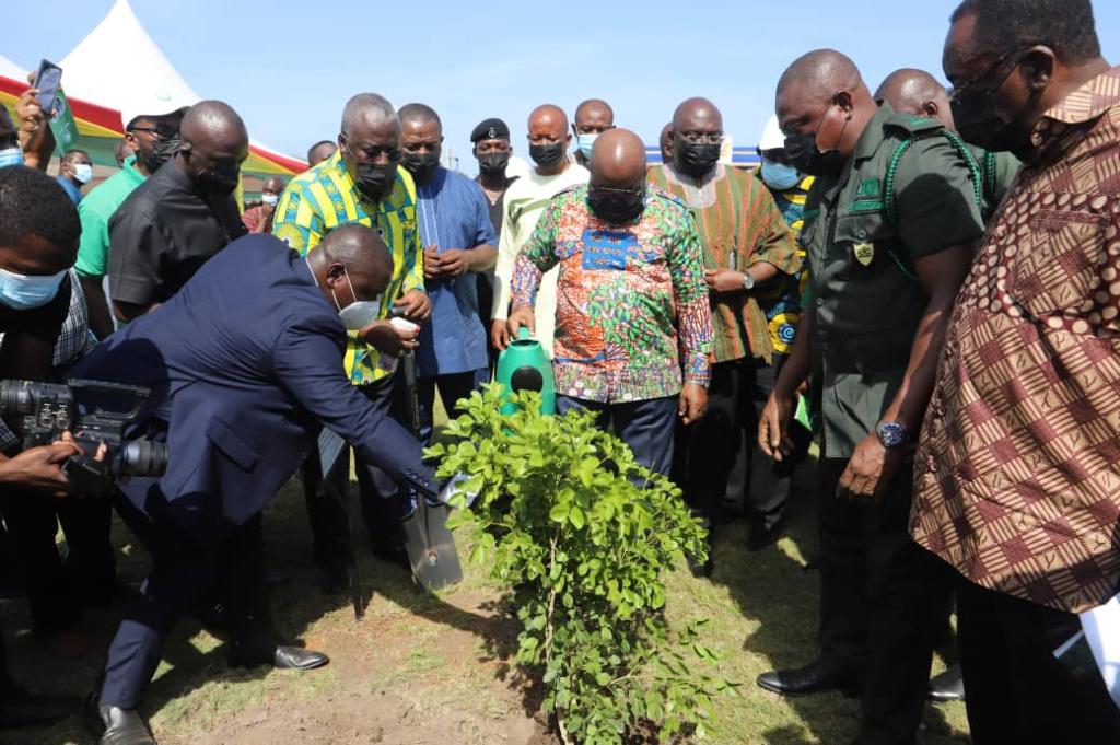 Akufo-Addo plants 'tree of life' to mark Green Ghana Day