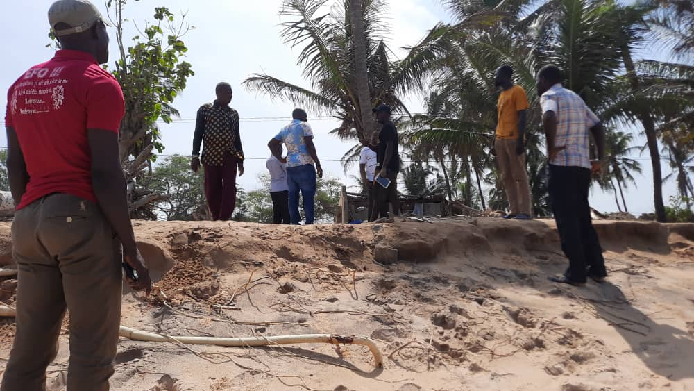 Save our coconut trees in coastal areas instead of introducing foreign dwarf coconut trees - Togbui Fiti to government