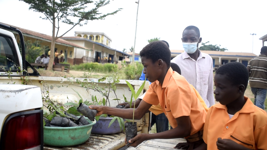 FORIG releases 2,500 seeds to support Green Ghana project