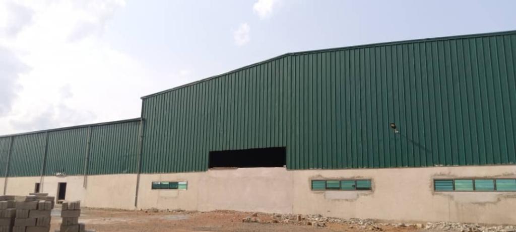 1D1F: Akuapem Gold set to begin processing of avocado oil in September