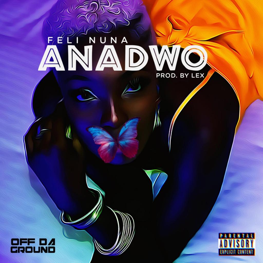 Feli Nuna releases new song, 'Anadwo'