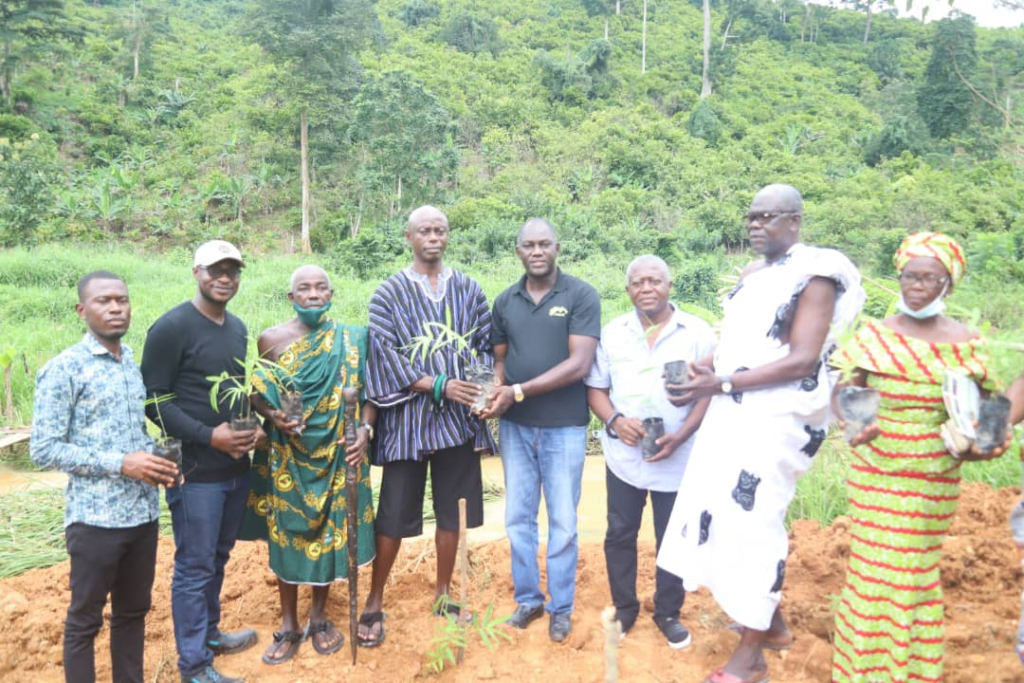Government urged to pay attention to Bamboo and its economic benefits