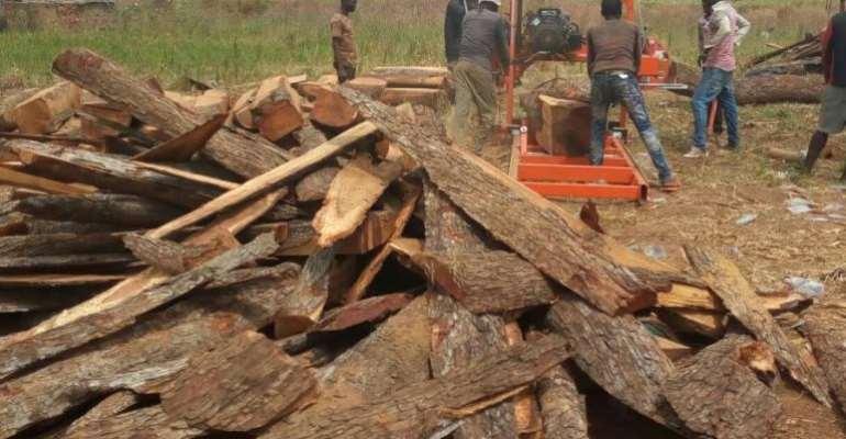 Sunyani Municipal Best Farmer for 2020 bemoans illegal chainsaw operations