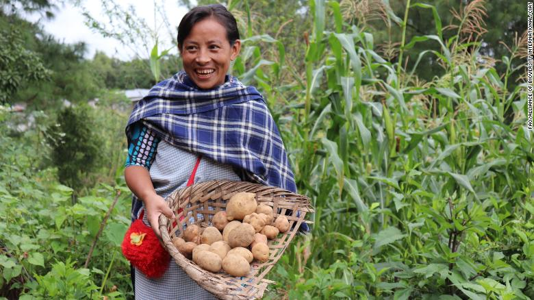 'Nature is not a commodity': Can the world learn from indigenous food systems, before they are lost?